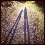 shadow long2