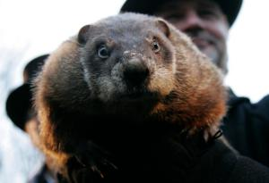 This image has an empty alt attribute; its file name is Groundhog-Day.jpg