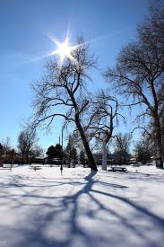 Image result for winter sun