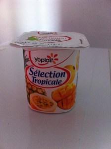 yaourt1