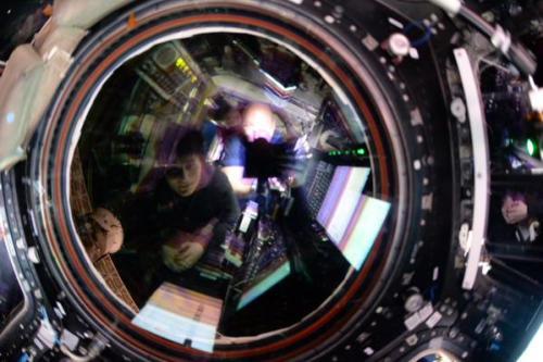 Samantha Cristoforetti et Scott Kelly (qui a pris la photo) dans la Cupola lors de l'approche du SpX6 (credit NASA)