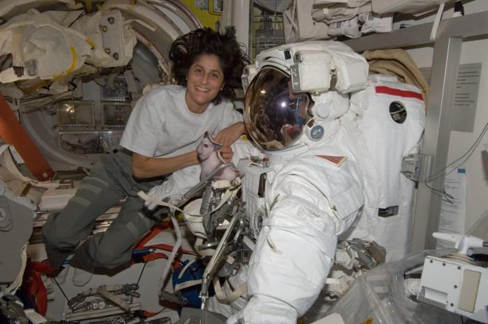 L'astronaute Sunita Williams, Expedition 32 ingénieur de vol et le commandant de la mission Expedition 33 dans l'ISS avec son scaphandre spatial (credit NASA)