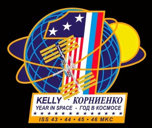 YearInSpace_logo