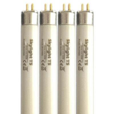 Best fluorescent lamps