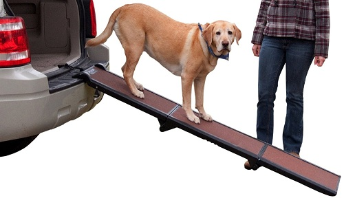 Best Dog Ramps or Dog Steps Reviews