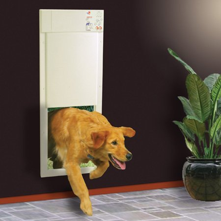 Best Dog Doors Reviews 2018