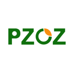 15. Pzoz-Best & Top Mobile Accessories Brand on Aliexpress
