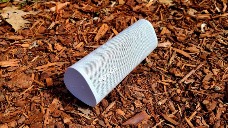Sonos Roam set against bark