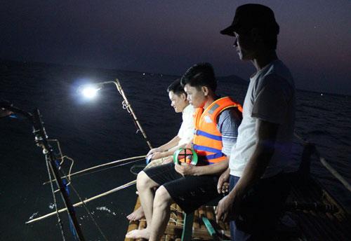Câu mực đêm… phủi trên vịnh Hạ Long