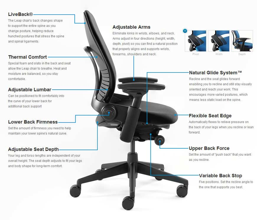 Steelcase Amia vs Steelcase Leap Chair