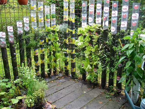 Vertical Gardening: Grow More in Less Space & in Less Time 5