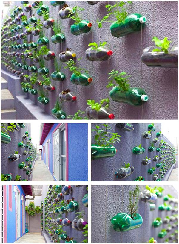 Vertical Gardening: Grow More in Less Space & in Less Time 1