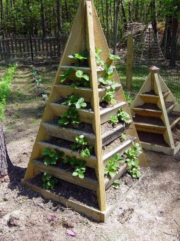 Vertical Gardening: Grow More in Less Space & in Less Time 8