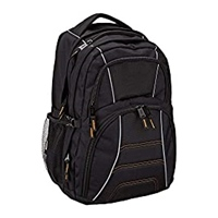 AmazonBasics Laptop Computer Backpack