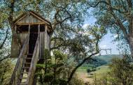 10 Simple Treehouse Ideas That Your Kids will Love!