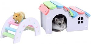 Hamiledyi Sugar Glider Huts best toys for Sugar gliders 300x147 1 best toys for sugar gliders
