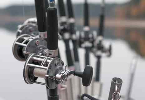 Best Inshore Saltwater Spinning Reel review