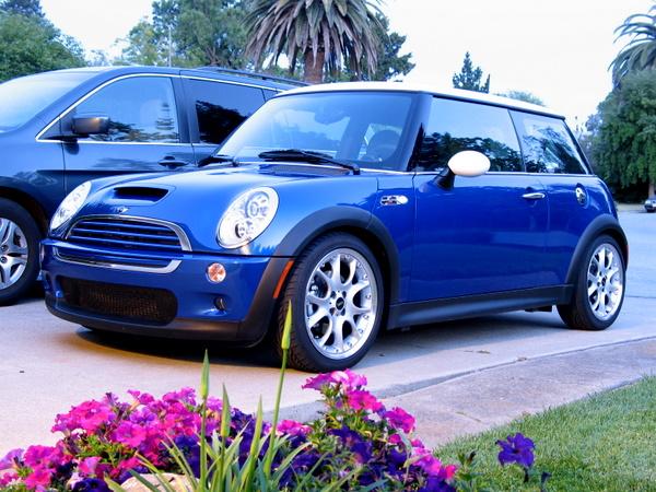 Springs Cooper 2010 Mini S Lowering