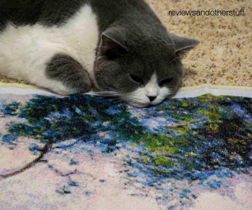 cat likes cross stitch