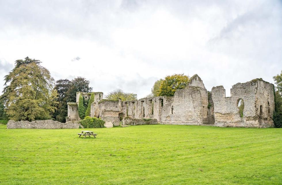 bishop's waltham ruins england