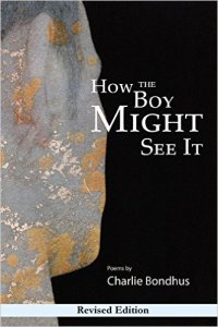 how-the-boy-might-see-it
