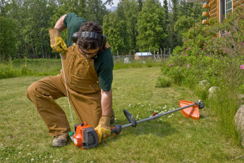 The Best Weed Eater Reviews Guide