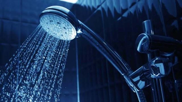 best rv shower head