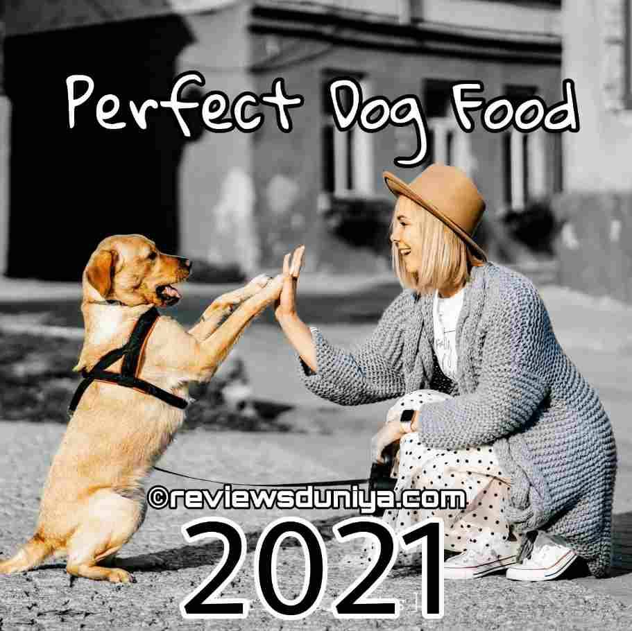 Best Dog Food On Amazon 2021: Cheapest and Healthy Food For Dogs in 2021 – Dog Foods(USA)