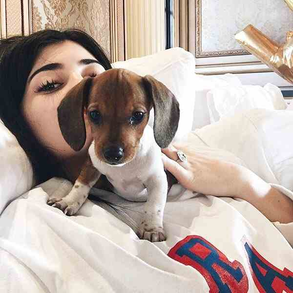 Kylie Enjoys with her Dog