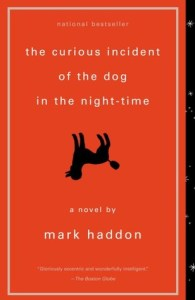 The Curious Incidenct of the Dog in the Night-time