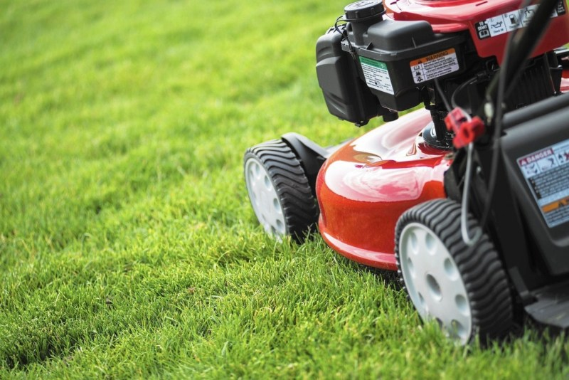 Top 10 Best Walk-Behind Gasoline Lawn Mowers For The Perfectly Trimmed Lawn