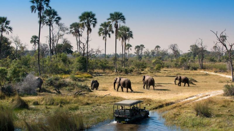 Tourist Attractions In Botswana