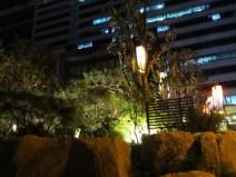 Lights near my house