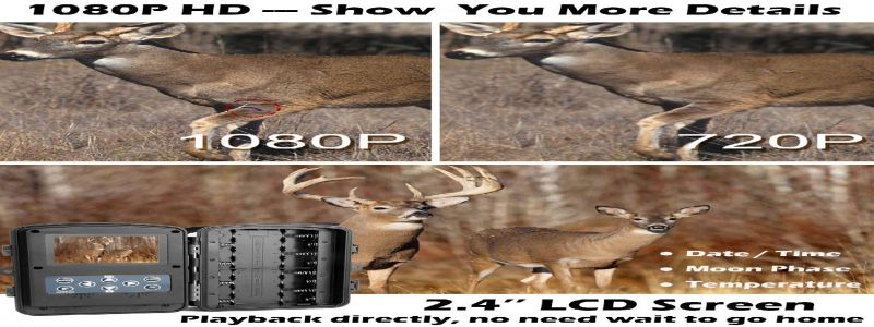 """X-Launger Game Trail Camera """"The Complete In-Depth Review"""""""
