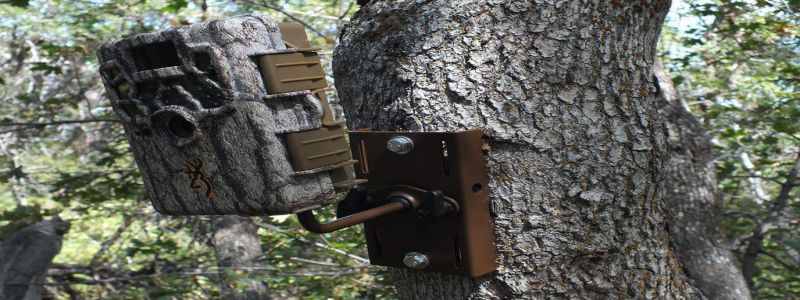 Trail Camera Mounts