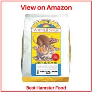 Best Hamster's Foods