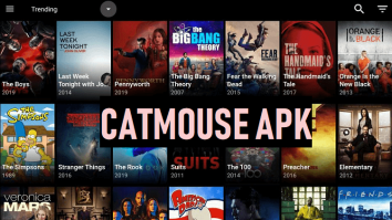 Catmouse Image