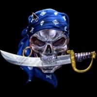 A pirates life logo