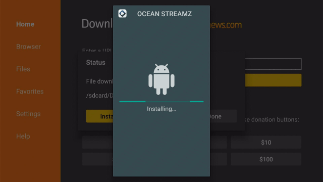 Install Oceanstreamz App on Firestick Step 17