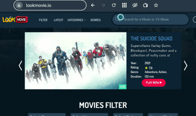 Stream Look Movie Website On FireStick Step 12