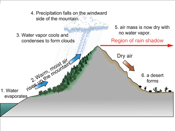 Rain-shadow Effect. Image by Wikispaces