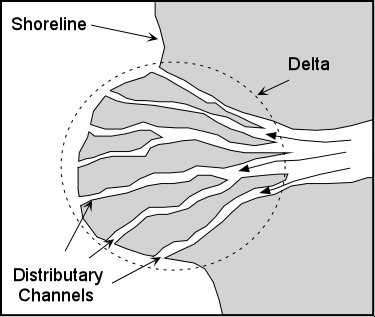 Arcuate Delta. Image credit Wikispaces.com