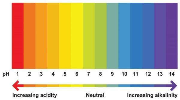 The pH colour chart. Image credit abcam.com