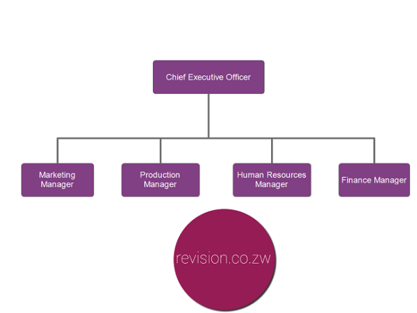 Functional organisational structure