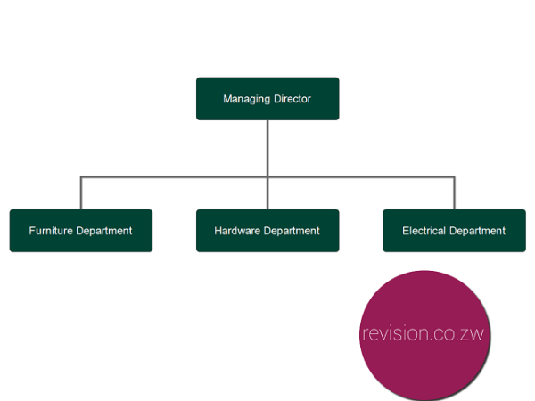 An example of Product Based Organisational structure.