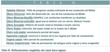 Revista jun2004 Art. 38-53 Tabla III
