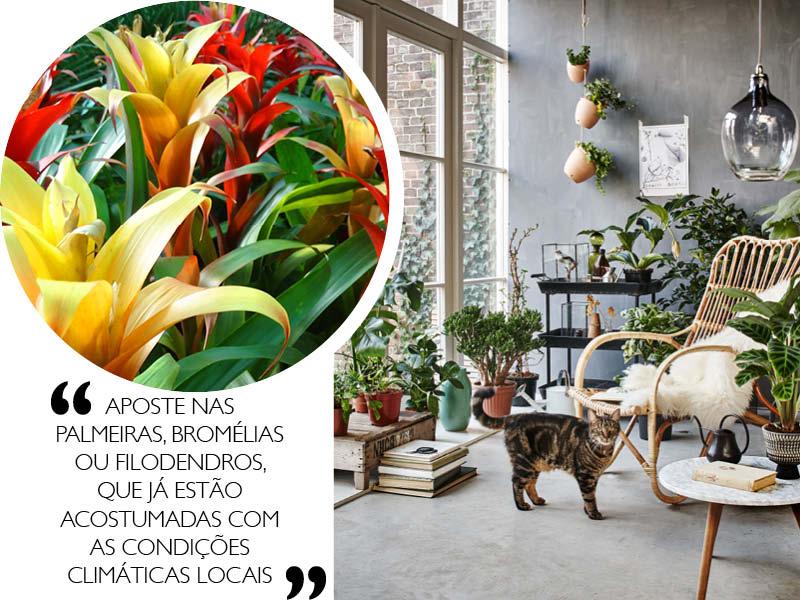 Decoracao-sustentavel-para-a-casa-nova-plantas
