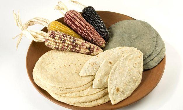 Todo sobre: Blancas, azules o amarillas, son las tortillas.