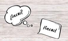 expresiones, refranes y dichos mexicanos con taco