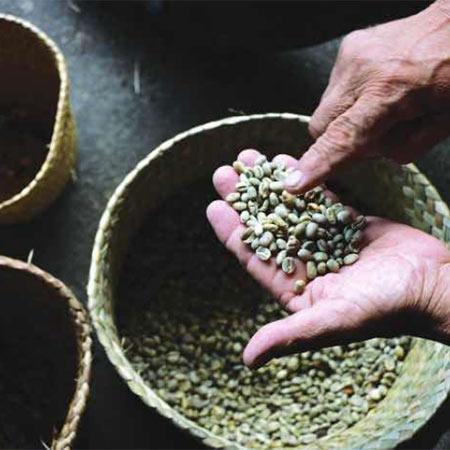 cafe de veracruz, denominaciones de origen de México